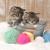 котят · пряжи · студию · прелестный · ребенка - Сток-фото © tobkatrina