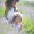 ラベンダー · 花畑 · 新鮮な · 紫色 · 芳香族の · 工場 - ストックフォト © tobkatrina