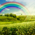 rainbow on the meadow abstract natural backgrounds for your des stock photo © tolokonov