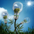 alternatief · energie · laptop · gras · zonnepaneel · elektrische - stockfoto © tolokonov