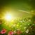 лет · утра · аннотация · окружающий · фоны · небе - Сток-фото © tolokonov