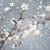 яблоко · Blossom · филиала · рано · весны · природы - Сток-фото © tolokonov