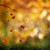 autumn abstract natural backgrounds for your design stock photo © tolokonov