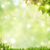 abstract natural backgrounds with beauty bokeh and lens flare stock photo © tolokonov