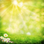 красоту · Daisy · цветы · луговой · окружающий · фоны - Сток-фото © tolokonov