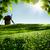 クローズアップ · 風車 · 表示 · 古代 · 市 - ストックフォト © tolokonov