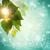 absztrakt · természet · zöld · háttér · nap · tavasz - stock fotó © tolokonov