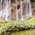 nagy · szépség · vízesés · kilátás · víz · fű - stock fotó © tomasz_parys