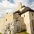 jura region   bobolice castle stock photo © tomasz_parys