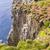 Islande · pointe · Europe · herbe · nature · paysage - photo stock © tomasz_parys