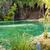 Plitvice lakes, view on clean lake. Croatia. stock photo © tomasz_parys