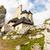 Top of castle in Bobolice stock photo © tomasz_parys