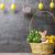 húsvét · kártya · tojások · tavaszi · virágok · kellemes · húsvétot · húsvéti · tojások - stock fotó © tommyandone