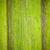 mossy wooden background texture stock photo © tommyandone