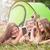 счастливым · друзей · смартфон · лагерь · кемпинга - Сток-фото © tommyandone