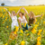 ayçiçeği · alan · portre · sevimli · kız - stok fotoğraf © tommyandone