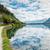 альпийский · долины · Австрия · небе · лес · пейзаж - Сток-фото © tommyandone