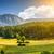 sceniczny · słońce · krajobraz · efekt · dolinie - zdjęcia stock © tommyandone