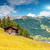 alpine landscape during the summer season stock photo © tommyandone