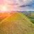 mooie · chocolade · heuvels · Filippijnen · landschap · boom - stockfoto © tommyandone