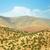 atlas mountains stock photo © tony4urban