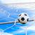 футбольным · мячом · цель · чистой · Футбол · спорт · футбола - Сток-фото © tungphoto