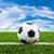 футбольным · мячом · ворот · зеленая · трава · спорт · Футбол · солнце - Сток-фото © tungphoto