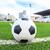 balón · de · fútbol · hierba · verde · campo · fútbol · deporte · fútbol - foto stock © tungphoto
