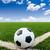 футбола · зеленая · трава · области · Футбол · Blue · Sky · спорт - Сток-фото © tungphoto