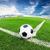 balón · de · fútbol · hierba · verde · azul · cielo · deporte · naturaleza - foto stock © tungphoto