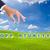 üzletember · kéz · bizalom · szó · gombok · zöld · fű - stock fotó © tungphoto