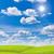 prado · blue · sky · primavera · grama · natureza · campo - foto stock © tungphoto