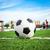 futbol · topu · yeşil · ot · futbol · spor · futbol · yaz - stok fotoğraf © tungphoto
