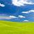 verde · fresche · erba · cielo · blu · panorama · pronto - foto d'archivio © tungphoto