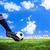 foot shooting football stock photo © tungphoto
