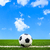 футбольным · мячом · зеленая · трава · области · Футбол · спорт · футбола - Сток-фото © tungphoto
