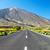 vieux · asphalte · route · texture · noir · concrètes - photo stock © tuulijumala