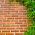 zöld · téglafal · textúra · építkezés · fal · háttér - stock fotó © tuulijumala