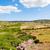 menorca island field landscape with old traditional masonry fenc stock photo © tuulijumala
