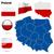 Польша · вектора · набор · подробный · стране · форма - Сток-фото © tuulijumala