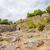 tour · anciens · forteresse · pavillon · église · guerre - photo stock © tuulijumala