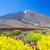 park · vulkáni · kövek · kék · ég · Kanári-szigetek · égbolt - stock fotó © tuulijumala