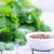kişniş · büyüyen · çiftlik · gıda · yaprak · beyaz - stok fotoğraf © tycoon