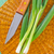 picado · imagem · cebolas · água · doce · água - foto stock © tycoon