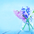 синий · цветы · розовый · ваза · аннотация - Сток-фото © tycoon