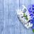 flores · primavera · cor · branco · férias · buquê - foto stock © tycoon