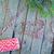 ahşap · düğüm · eski · şube - stok fotoğraf © tycoon