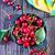 hoop · kers · blad · zomer · vruchten · sap - stockfoto © tycoon