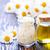 aromaterapia · olio · bottiglie · alternativa · medicina - foto d'archivio © tycoon