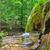 rainforest · водопада · осень · пышный · красочный · листьев - Сток-фото © tycoon